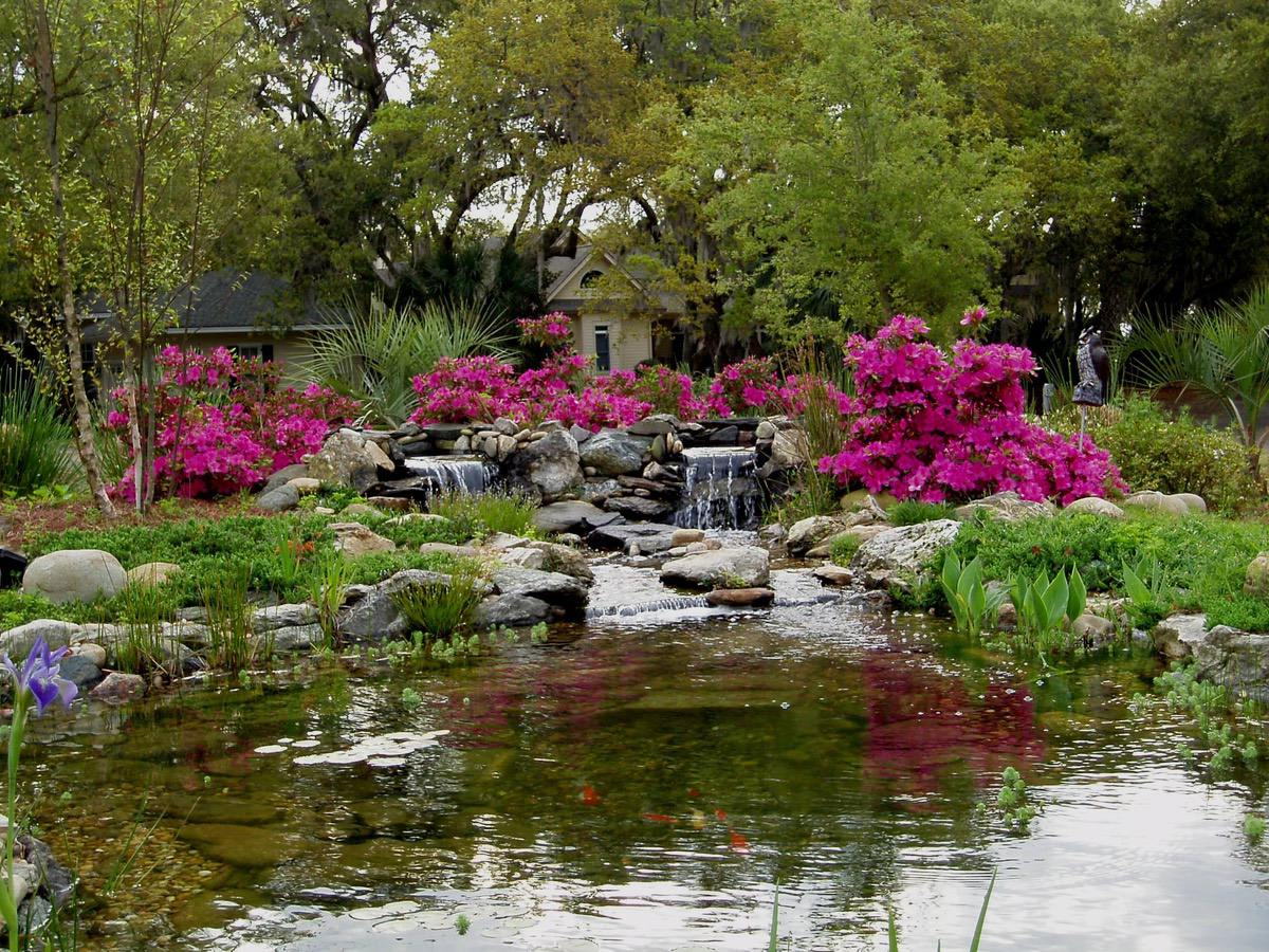 Pretty Ponds: Trevor Strever Creates Serene Garden