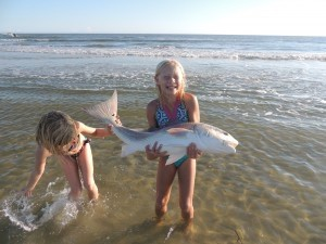 Julia Pollitzer caught and released this monster redfish off a sandbar in Port Royal Sound. Liza Standridge helps her hold the tail.