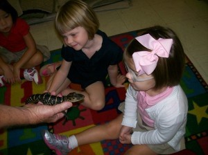 Mr. and Mrs. Harris from Spring Island Conservation brought amphibians to the Beaufort Academy PreK/Kindergarten building last Monday. The students learned and observed a baby alligator, turtle, salamander and other local amphibians. Above, PreK-3 students Kate Rhodes and Ava Richards meet a baby alligator.