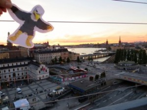 Beaufort Academy junior McKenzie Blake is spending the year studying abroad in Sweden, sponsored by Rotary Club of Hampton County. The BA students enjoyed seeing Screech the Eagle, BA's mascot, flying over Sweden!