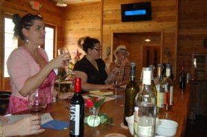 Nikki, Laura and Irene stand at the bar in the tasting room as they sample wine.