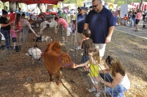 Bethany McMahon, right, watches as her daughter Avery gets her fingers licked by a calf during last Saturday's KidFest at Cross Creek Shopping Center.