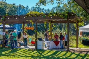 """Gorgeous weather last weekend drew crowds to the Second Annual """"Novel"""" Wine Tasting, Arts and Literary Festival at September Oaks Winery in Ridgeland, SC. Photos by Captured Moments."""