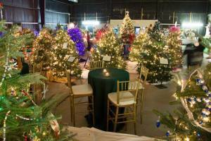 This year's Festival of Trees to benefit Friends of Caroline Hospice will be held at The Shed in Port Royal from December 4-6.
