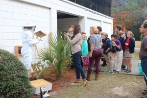 A group of Lower School students observe Tami Enright as she moved the bees into their new home.