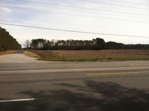 This photo shows the cornfield at the corner of Hwy 21 and Washington Farms Rd in Lobeco. The county bought this land and intends to build a gun park on it.