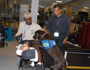 see: http://www.army.mil/-news/2008/06/27/10451-dogs-help-wounded-warriors-heal-at-walter-reed/