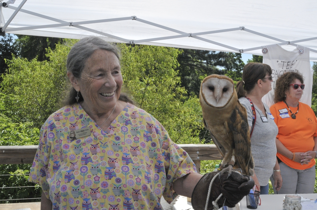 """Nancy """"Maudy"""" Owen of Gryphon Den showing visitors a Barred Owl."""