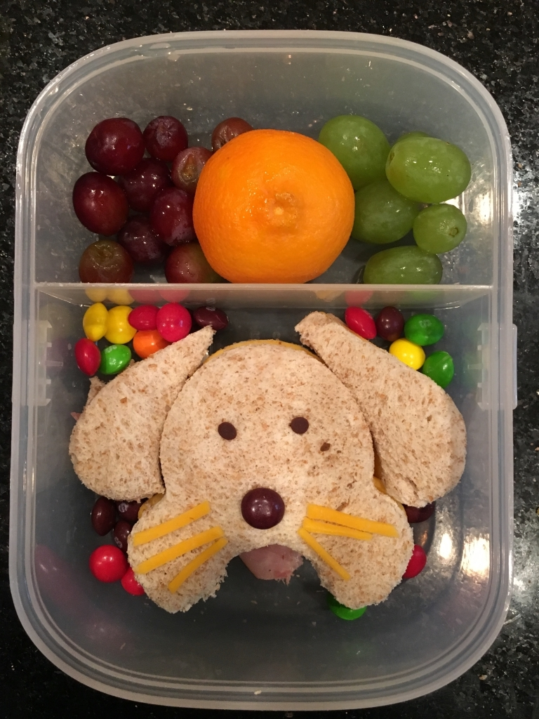 One of Sofie Beth's colorful lunch creations