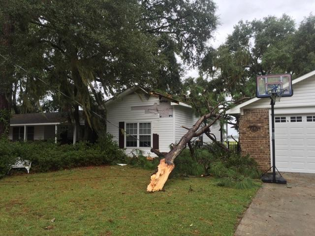 A tree was split during Tropical Storm Hermine on Sept. 2. Photo courtesy of the Beaufort Fire Department.
