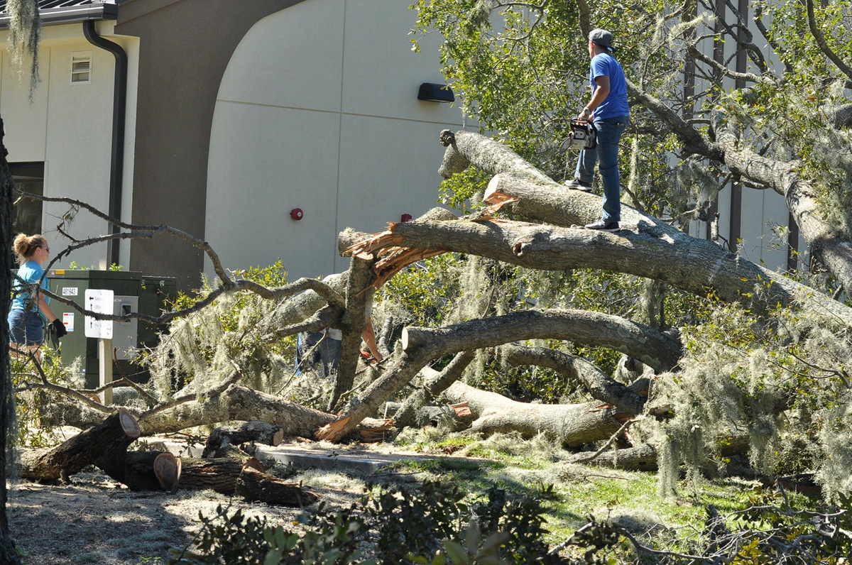 Conrad Meier, pastor of Praise Assembly on Parris Island Gateway, stands on the massive oak tree that came down on church grounds. The church had two trees downed by Hurricane Matthew. Meier said the church would be open for Wednesday night services. Photo by Bob Sofaly.