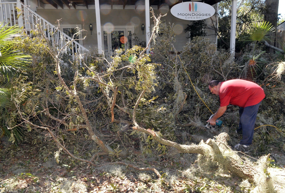 Dave Vista, owner of Moon Doggies Cafe in Port Royal, said none of the trees or limbs on the property came down on his business and experienced no interior flooding. Vista said he would be open for business very soon. Photo by Bob Sofaly.