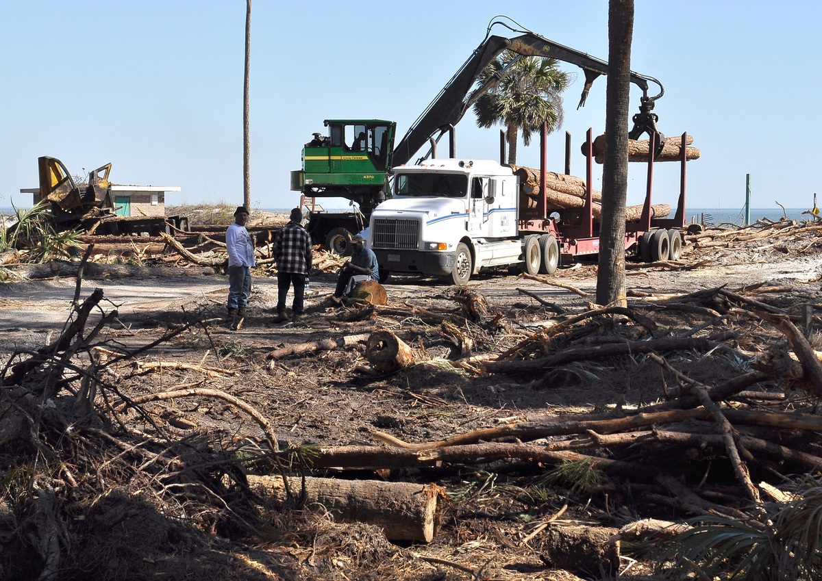 Heavy equipment hauls out fallen pine and palmetto trees at Hunting Island. There are no more sand dunes to protect the popular beach, leaving the entire park vulnerable.