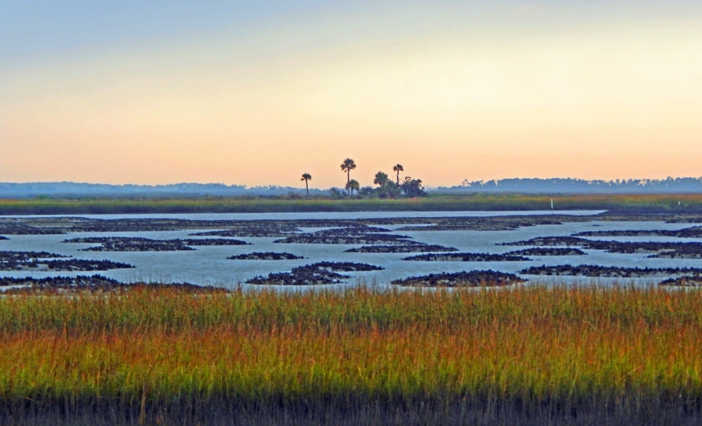 loving the low country featured at baa gallery the island news