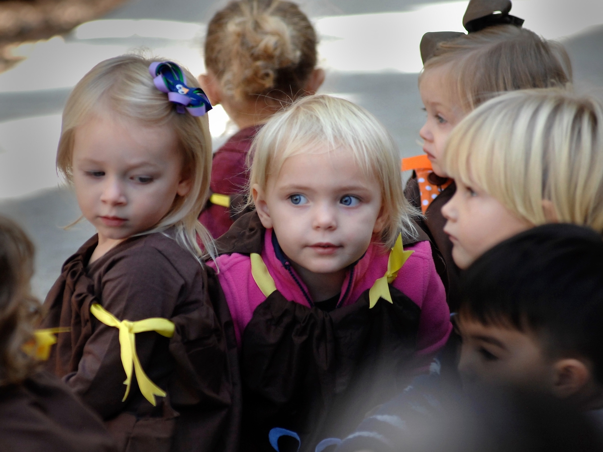 Turkeys from Angela Barnes' 2-year-old class were everywhere and just as hard to contain during Beaufort Academy's Preschool annual Thanksgiving play.
